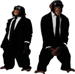 Monkeys as Men in Black
