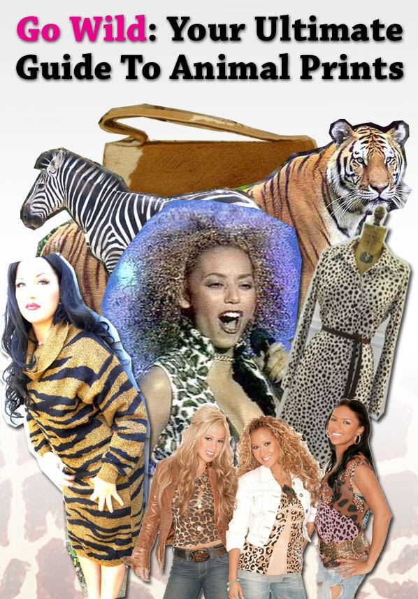 Go Wild: The Ultimate Guide to Animal Prints post image
